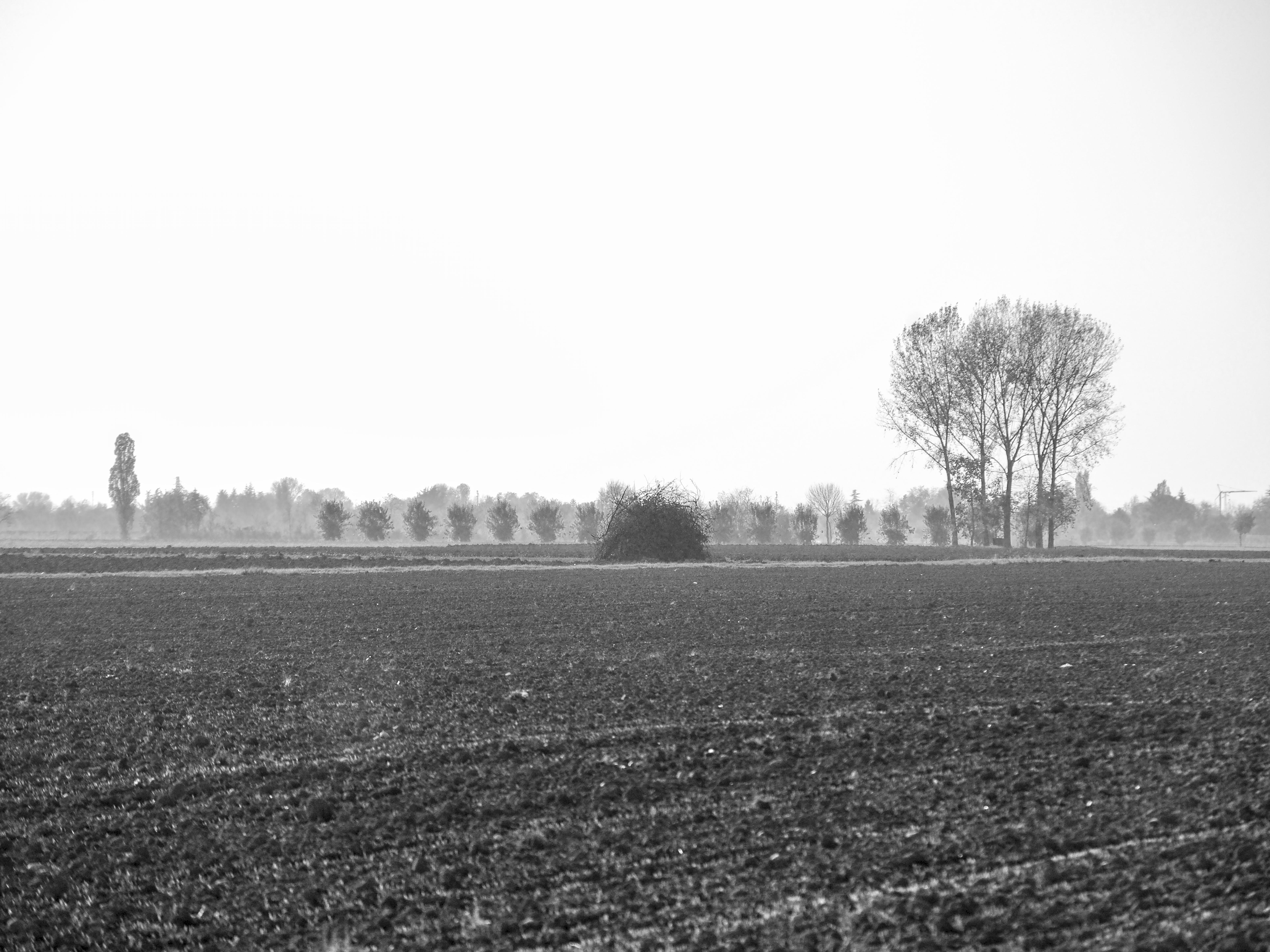 Autunno 2011_005 sdm